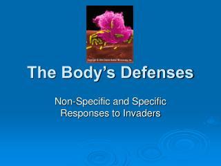 The Body s Defenses
