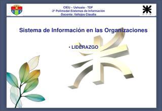 Sistema de Información en las Organizaciones  LIDERAZGO