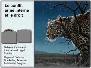 Le conflit armé interne et le droit
