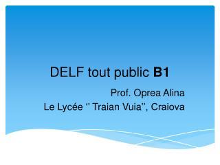 DELF tout public B1