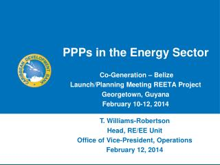 PPPs in the Energy Sector