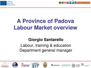 A Province of Padova Labour Market overview