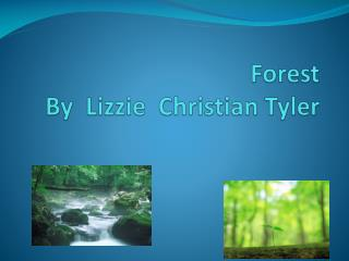 Forest By  Lizzie  Christian Tyler