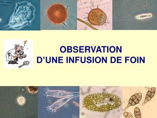 OBSERVATION  D'UNE INFUSION DE FOIN