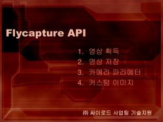 Flycapture API