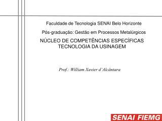 Faculdade de Tecnologia SENAI Belo Horizonte Pós-graduação: Gestão em Processos Metalúrgicos