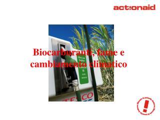 Biocarburanti, fame e cambiamento climatico