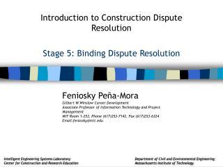 Stage 5: Binding Dispute Resolution