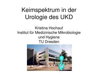 Keimspektrum in der Urologie des UKD Kristina Hochauf