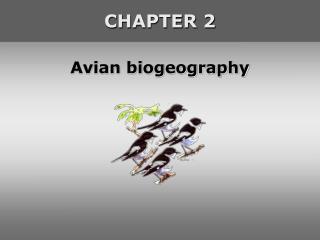 Avian biogeography