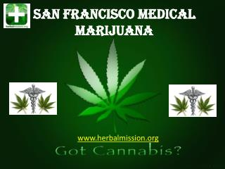 San Francisco Medical Marijuana