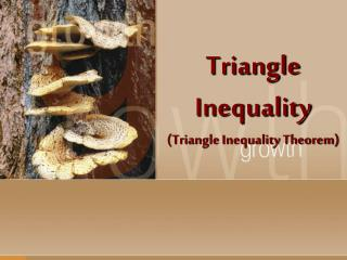 Triangle Inequality (Triangle Inequality Theorem)