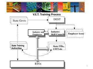 V.E.T. Training Process