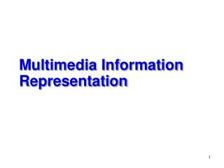 Multimedia Information Representation