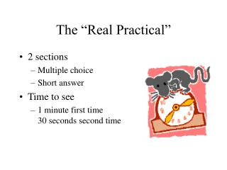 The �Real Practical�