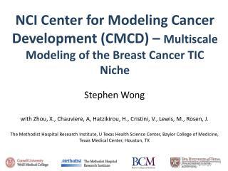 Stephen Wong with Zhou, X.,  Chauviere , A,  Hatzikirou , H.,  Cristini , V., Lewis, M., Rosen, J.