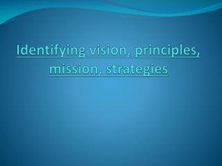 Identifying vision, principles, mission, strategies