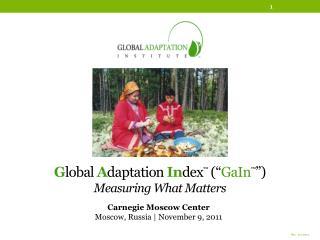"""G lobal A daptatio n In dex ™  ("""" GaIn ™ """") Measuring What Matters"""