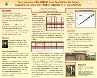 Determination of the FAO-56 Crop Coefficients for Cotton