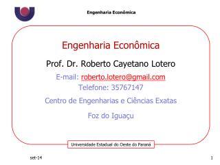 Engenharia Econ�mica Prof. Dr. Roberto  Cayetano Lotero E-mail :  roberto.lotero@gmail