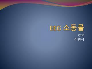 EEG  소동물