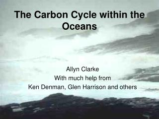 The Carbon Cycle within the Oceans