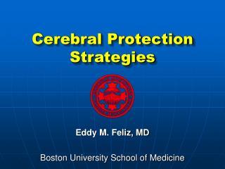 Cerebral Protection Strategies