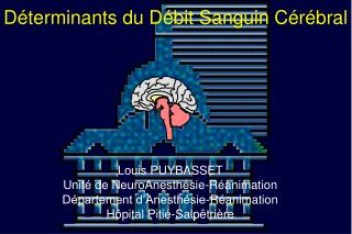 Louis PUYBASSET Unité de NeuroAnesthésie-Réanimation Département d'Anesthésie-Réanimation