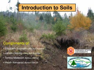 Introduction to Soils