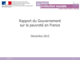 Rapport du Gouvernement  sur la pauvreté en France