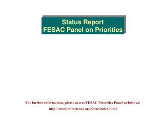 Status Report FESAC Panel on Priorities