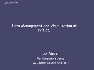 Data Management and Visualization at Pitt CS