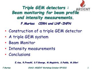 Triple GEM detectors : Beam monitoring for beam profile  and intensity measurements.