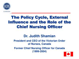 The Policy Cycle, External Influence and the Role of the Chief Nursing Officer