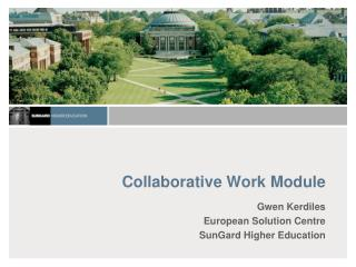 Collaborative Work Module