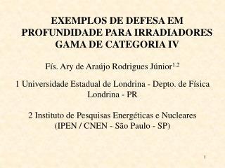 EXEMPLOS DE DEFESA EM PROFUNDIDADE PARA IRRADIADORES GAMA DE CATEGORIA IV