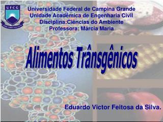 Universidade Federal de Campina Grande Unidade Acadêmica de Engenharia Civil