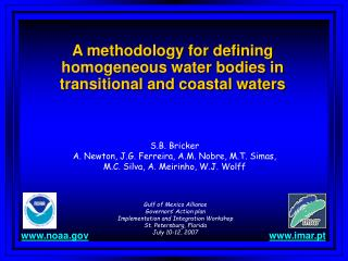 A methodology for defining homogeneous water bodies in transitional and coastal waters