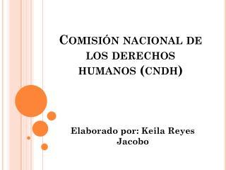 Comisi�n nacional de los derechos humanos ( cndh )