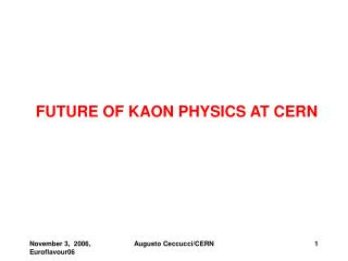 FUTURE OF KAON PHYSICS AT CERN