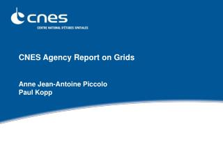 CNES Agency Report on Grids