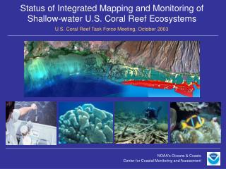 Status of Integrated Mapping and Monitoring of Shallow-water U.S. Coral Reef Ecosystems