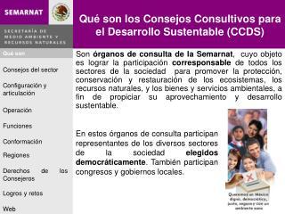 Qué son los Consejos Consultivos para el Desarrollo Sustentable (CCDS)