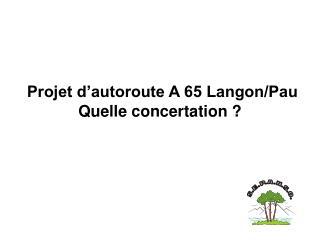 Projet d'autoroute A 65 Langon/Pau Quelle concertation ?