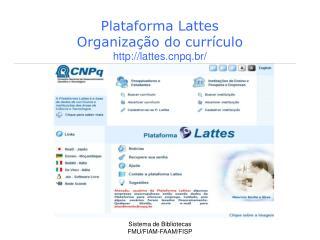 Plataforma Lattes  Organiza��o do curr�culo lattespq.br/