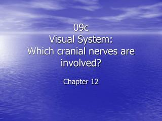 09c Visual  System: Which cranial nerves are involved? Chapter 12