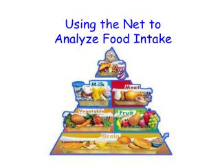Using the Net to  Analyze Food Intake