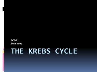 THE KREBS CYCLE