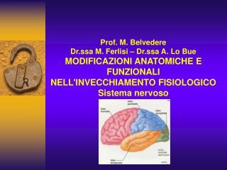 Prof. M. Belvedere Dr.ssa M. Ferlisi   Dr.ssa A. Lo Bue MODIFICAZIONI ANATOMICHE E FUNZIONALI  NELLINVECCHIAMENTO FISIOL