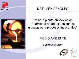 MET–MEX PEÑOLES